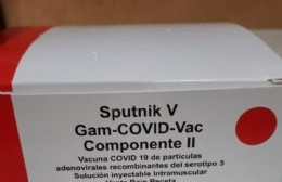 Llegaron segundos componentes de la Sputnik V industria nacional
